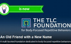 The TLC Foundation Logo